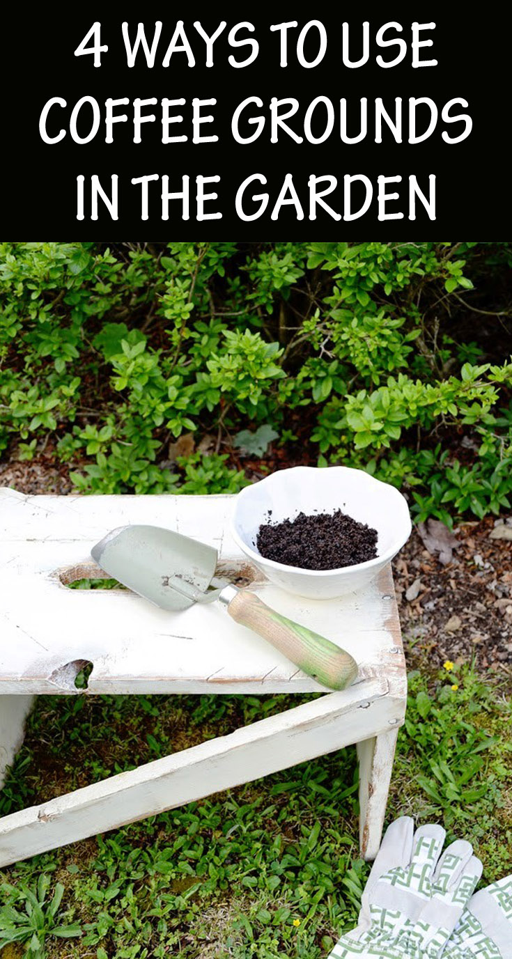 4 Ways To Use Coffee Grounds In The Garden