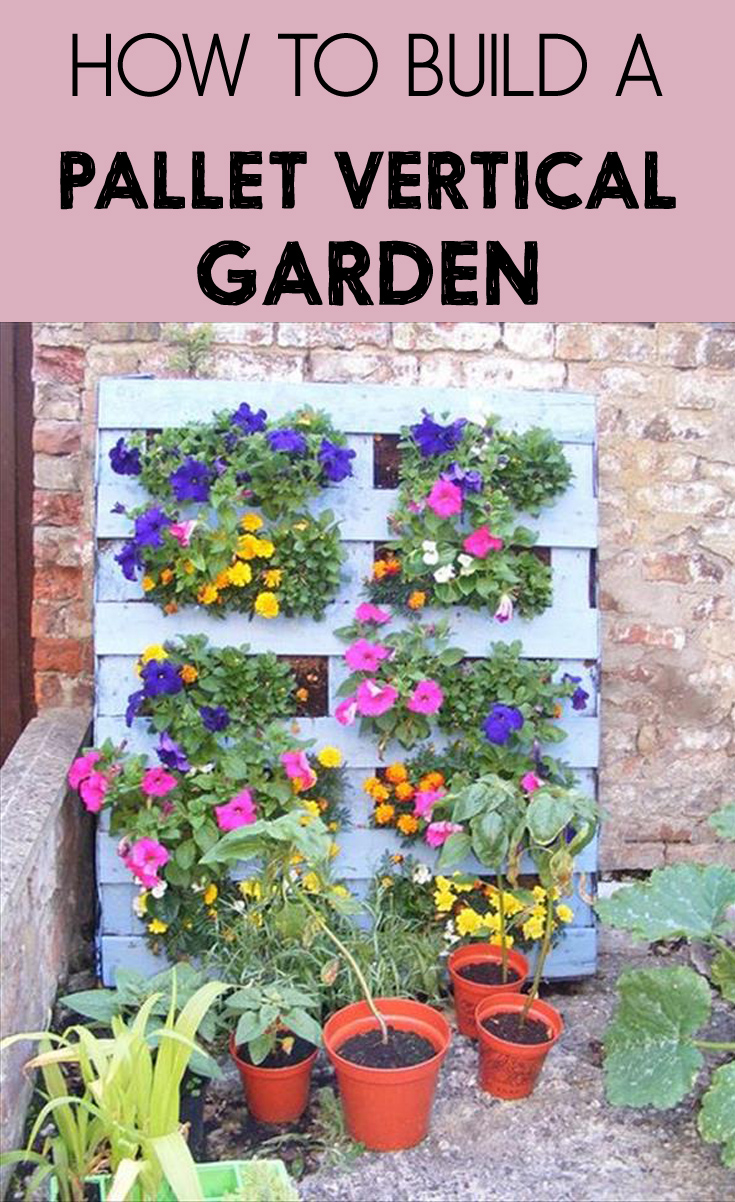 How to build a pallet vertical garden for How to build a vertical pallet garden
