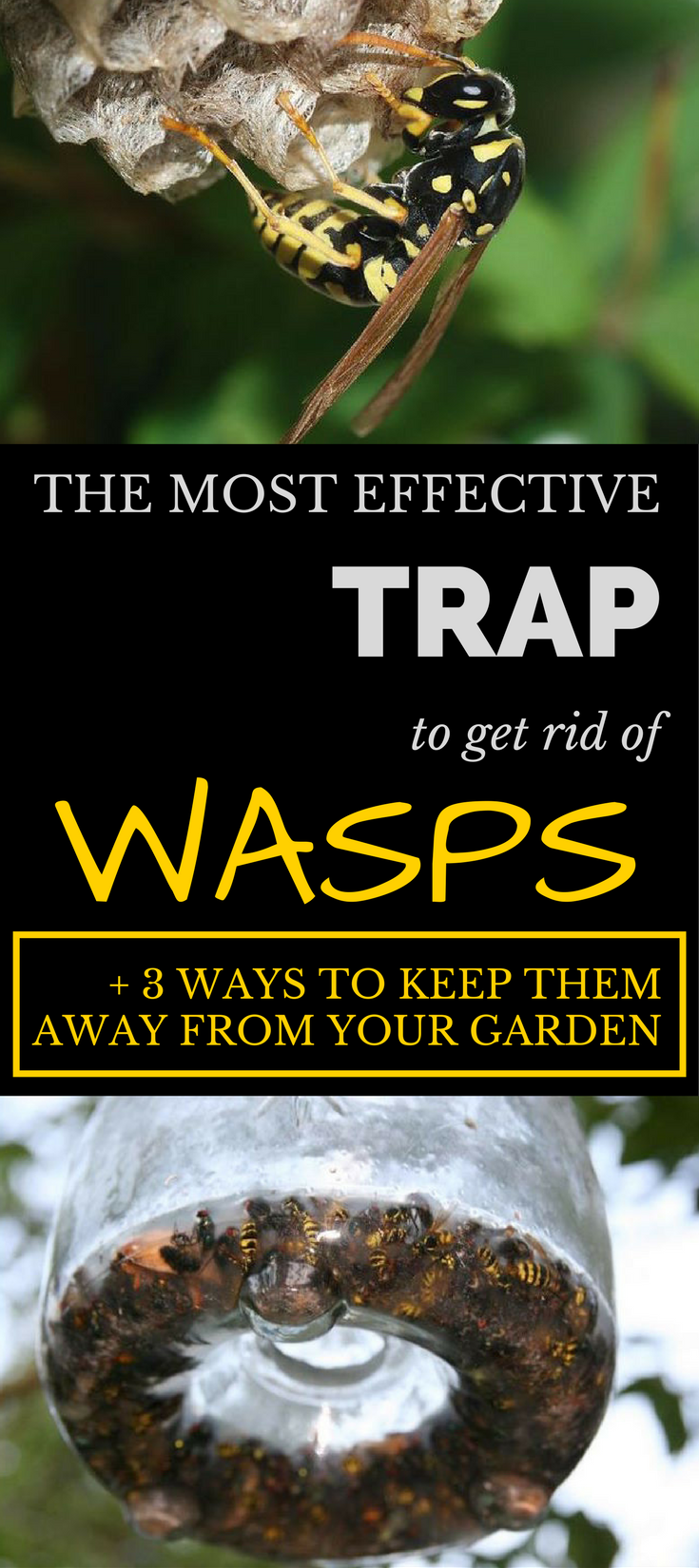 The Most Jaw Dropping Looks From The 2015 Met Gala Red: The Most Effective Trap To Get Rid Of Wasps (+ 3 Ways To