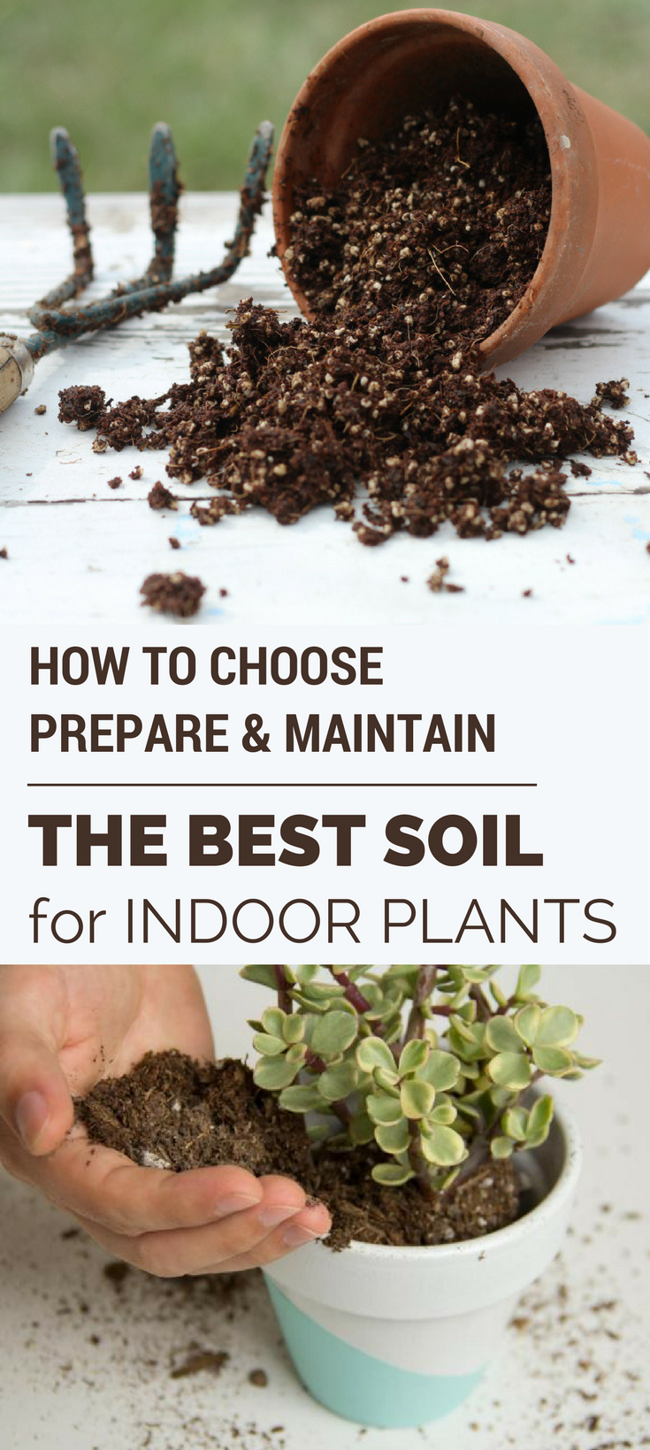 Marvelous How To Choose, Prepare U0026 Maintain The Best Soil For Indoor Plants    GardenTipz.com