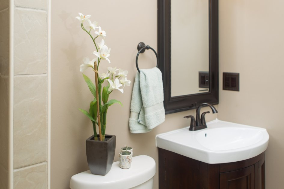 3 Plants That Will Grow Better In Your Bathroom